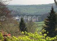 View towards Calstock Viaduct in the Spring of 2011. The 850' long 12-arch viaduct, completed in 1908, carries trains on the Gunnislake branch between Bere Alston and Calstock 120' above the River Tamar.<br><br>[Ian Dinmore&nbsp;19/04/2011]