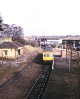 A Bidston - Wrexham Central DMU arrives at the surviving platform of the former Wrexham Exchange station in March 1985. View north from Regent Street bridge, with the original 1846 Shrewsbury and Chester's Wrexham General station alongside on the right. Exchange is officially recorded as being closed to passengers in 1981, when rationalisation was carried out and this platform became the bi-directional platform 4 of Wrexham General. Note the class 47 hauled freight heading north in the background.    <br><br>[Ian Dinmore&nbsp;/03/1985]
