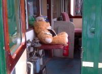 Scandal on the Colne Valley Railway: this chap can bearly drive! Good job he's in the second man's seat.<br><br>[Ken Strachan&nbsp;20/07/2013]