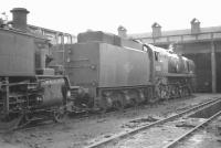 Scene on shed at Exmouth Junction in August 1961, with Bulleid Merchant Navy Pacific no 35003 <I>Royal Mail</I>. <br><br>[K A Gray&nbsp;18/08/1961]
