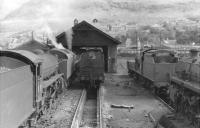 View over a busy Fort William shed in September 1961.<br><br>[David Stewart&nbsp;06/09/1961]