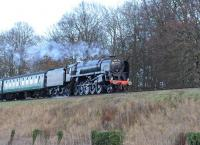 BR 9F 92212 with a train on the Mid Hants Railway near Ropley on 28 December 2013.<br><br>[Peter Todd&nbsp;28/12/2013]