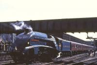 4498 <I>Sir Nigel Gresley</I> stands at Aberdeen on 20 May 1967, shortly after arrival with an A4 Locomotive Society railtour from Glasgow Central. <br><br>[G W Robin&nbsp;20/05/1967]