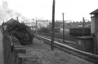 A Black 5 leaves Motherwell on 5 July 1964 with a stopping train for Glasgow Central. <br><br>[John Robin&nbsp;05/07/1964]