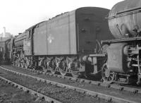 Part of a lineup at Heaton shed on 6 October 1962 includes Peppercorn A2 Pacific no 60531 <I>Bahram</I>, a visitor from Aberdeen Ferryhill. <br><br>[K A Gray&nbsp;06/10/1962]