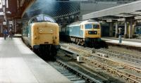 Looking back through the station from the east end of Newcastle Central in 1981 with Deltic and class 47 locomotives at the platforms. The Deltic is 55016 <I>Gordon Highlander</I>.<br><br>[Colin Alexander&nbsp;//1981]