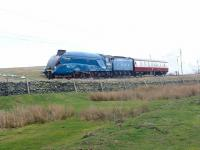A4 4464 <I>Bittern</I> with support coach heading north over Shap on 15 March 2014. [See image 46651] [Editors note: The 'gauging issues' appear to concern platform clearance at Carlisle, relating to the valances fitted to 4464]<br><br>[Jim Peebles&nbsp;15/03/2014]