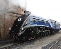 60007 <I>Sir Nigel Gresley</I> is one of the stars of the Great Western Society's <I>'Big Blue Engine Day'</I> at Didcot on 5 April 2014.<br><br>[Peter Todd&nbsp;05/04/2014]