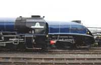 60163 and 60007 side by side at Didcot on 5 April during <I>Big Blue Engine Day</I>.<br><br>[Peter Todd&nbsp;05/04/2014]