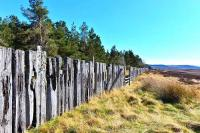 Remains of a snow fence looking south towards Grantown-on-Spey, with the Cairngorms in the distance.<br><br>[John Gray&nbsp;20/04/2014]