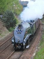 The Inverness - Aberdeen - Edinburgh leg of the <I>Great Britain VII</I> nearing Dysart on Saturday 3 May behind A4 60009 <I>Union of South Africa</I>.<br><br>[Bill Roberton&nbsp;03/05/2014]