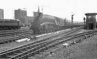 The 10.45am Kings Cross - Edinburgh Waverley about to run non-stop through Doncaster on 31 May 1963 behind an unidentified A4 Pacific. The Brush Type 4 standing on the left is one of the D1500-D1519 batch, the last of which entered BR service that month.<br><br>[K A Gray&nbsp;31/05/1963]