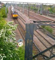 This is the point where the sand train which uses the North Chord [see image 42951] crosses from the line East from Leicester to the West facing line, so that it can run wrong line through platform 7 at Nuneaton. 66077 is the locomotive on 29 April.<br><br>[Ken Strachan&nbsp;29/04/2014]