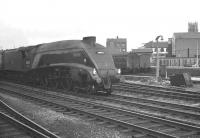 A4 60025 <I>Falcon</I> at Doncaster on 8 September 1962 with the 10.35am Newcastle Central - London Kings Cross.<br><br>[K A Gray&nbsp;08/9/1962]