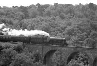 A northbound special crossing Slitrig Viaduct south of Hawick on 25 June 1966. The train is the Warwickshire Railway Society's <I>Aberdonian Railtour</I> with 4472 <I>Flying Scotsman</I> in charge for the leg from Hellifield to Edinburgh Waverley.<br><br>[Bruce McCartney&nbsp;25/06/1966]