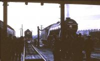 Inside looking out. Scene at Ferryhill shed on 5 November 1966. In the background is A2 Pacific 60532 <I>Blue Peter</I>, while taking water on the right is V2 2-6-2 60836. The V2 had arrived earlier off the BR (Scottish Region) <I>Last V2 Excursion</I> from Edinburgh. [See image 45627]<br><br>[G W Robin&nbsp;05/11/1966]