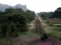 An overgrown Talsarnau halt stands in the middle distance, on the currently closed Harlech - Pwllheli section of the Cambrian Coast line. Photographed on 9 July 2014 against the backdrop of Harlech Castle. [Ref query 11785]<br><br>[Colin McDonald&nbsp;09/07/2014]