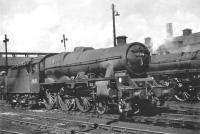 Jubilee 45716 <I>Swiftsure</I>, with Fowler tender, in the shed yard at Polmadie in July 1961. <br><br>[John Robin&nbsp;/07/1961]