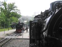 On 13th June the first Ruegensche Baederbahn service of the day over the 24km narrow-gauge route from Putbus to Goehren enters the loop at Sellin Ost to cross the first westbound train.<br> <br><br>[David Spaven&nbsp;13/06/2014]