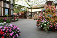 The <I>Friends of Wemyss Bay Station</I> have excelled themselves with their floral displays on the concourse during the summer of 2014.<br><br>[Colin McDonald&nbsp;27/08/2014]