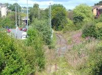 Looking north from King Street, Inverkeithing along the Rosyth Dockyard branch on 26 August 2014, with the track fast disappearing under weeds.  The junction with the main line is by Boreland Road bridge in the left background. [Ref query 6753]<br><br>[Bill Roberton&nbsp;26/08/2014]
