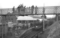 The SLS <I>'Farewell to Peebles'</I> railtour is the centre of attention at Peebles station on 3 February 1962. The special was hauled by the genuine J37 0-6-0 no 64587 [see image 28603].<br><br>[David Stewart&nbsp;03/02/1962]