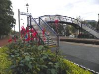 Lobelias and footbridge, complete with new lanterns, at Pitlochry on 9 October.<br><br>[John Yellowlees&nbsp;09/10/2014]