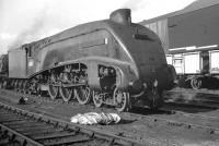 An A4 that spent almost its entire operational life at Gateshead was 60002 <I>Sir Murrough Wilson</I>. Originally named <I>Pochard</I> (for 8 months), it arrived new from Doncaster Works in 1938.  Other than a spell of 6 weeks at Kings Cross in 1943 the Pacific remained on Tyneside until its eventual withdrawal in May 1964. Seen here on its home shed, thought to be in 1963.<br><br>[K A Gray&nbsp;//1963]