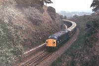 Split-headcode EE Type 4 40142 brings a rake of westbound <I>Presflo</I> hoppers from the Hope Valley line through the cutting immediately east of Chinley North Junction in 1978.  <br><br>[Mark Bartlett&nbsp;//1978]