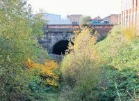 Autumn colours by the eastern portal of <I>Miley Tunnel</I> near Deepdale station in November 2014. Although it is around twenty years since the last train passed through it is only in recent years that vegetation has really taken over. [See image 18397] for the same location less than seven years earlier and 'Yes' the tracks are still there (somewhere). <br><br>[Mark Bartlett&nbsp;02/11/2014]