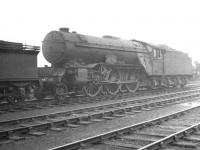 Gresley V2 2-6-2 no 60835 <I>The Green Howard</I>, thought to have been photographed in the shed yard at a hazy Carlisle Canal on 1 July 1961. [Ref query 6533] <br><br>[K A Gray 01/07/1961]