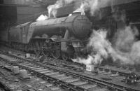 An undated photograph showing A3 Pacific no 60098 <I>Spion Kop</I> with a train at Newcastle Central. 60098 received its double chimney at Doncaster Works in mid 1959 and was withdrawn from St Margarets shed in October 1963.<br><br>[K A Gray&nbsp;//]