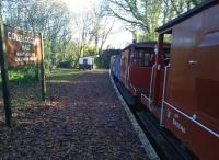 A BLS brake van special on 29 November, hauled by 08444 at this point, pauses at a distinctly leafy - and surprisingly warm for November - Colesloggett Halt. This halt was built in the preservation era, and is located between Bodmin Parkway and Bodmin General [see image 20941].<br><br>[Ken Strachan&nbsp;29/11/2014]