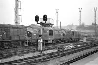 Photograph taken from the adjacent platform of Bristol Temple Meads station on 14 March 1970, showing blue liveried NBL diesel-hydraulic D6327 and green classmate D6348 on Bristol Bath Road MPD. To the left is EE 350hp shunter D3990, with an unidentified Hymek lurking in the background.<br><br>[Bill Jamieson&nbsp;14/03/1970]