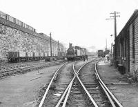 The former goods depot at Stobcross low level, alongside Queen's Dock, looking east towards Glasgow city centre in September 1958. Locomotives in the yard are N15 0-6-2T 69176 (nearest) and J88 0-6-0T 68344, both of 65D Dawsholm shed. The site is now part of the Clydeside Expressway with the supporting wall on the left the only surviving link [see image 8590]. [Ref query 6206] <br><br>[G H Robin collection by courtesy of the Mitchell Library, Glasgow&nbsp;09/09/1958]