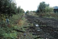 Looking west at Cambus Junction. The track has been lifted and will be replaced. The route straight ahead is for Stirling and that to the right for Menstrie and formerly Alva.<br><br>[Ewan Crawford&nbsp;23/10/2005]