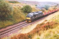 D6607 Ben Cruachan in BR green climbs to Slochd Summit with a train of log wagons, Autumn 1995.<br><br>[John Gray&nbsp;//]