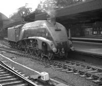 One of Kings Cross shed's A4 Pacifics no 60008 <I>Dwight D Eisenhower</I> stands alongside the platform at Newcastle Central station in the Autumn of 1962.<br><br>[K A Gray&nbsp;//1962]