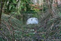 The site of Lasswade station in February 2015, looking towards the bricked up west portal of Broomieknowe Tunnel. Photographed through a gap in the fence, with the area behind the camera now a housing development. The single platform ran up to the left side of the tunnel mouth and the remains now lie beneath the undergrowth. The east portal of the tunnel is in an even more overgrown and inaccessible cutting just short of Bonnyrigg High Street. [See image 10232] <br><br>[John Furnevel&nbsp;20/02/2015]