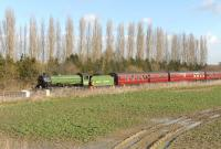B1 61306 at Challow on the GWR main line with <I>The Cathedrals Express</I> taking on water on 1 March 2015. <br><br>[Peter Todd&nbsp;01/03/2015]