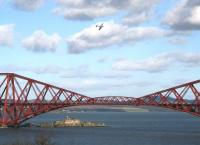 Part of the 'Forth Bridge 125' celebrations included an event recalling the <I>'Forth Bridge raid'</I> by the Lufwaffe on 16 October 1939, a few months before the bridge's 50th anniversary. The commemorative event, which took place on 4 March, featured a replica Spitfire flying over the bridge - seen here from South Queensferry. Below the bridge is Inchgarvie, a gun emplacement during WW2, providing protection for the bridge and the nearby Rosyth Naval Base (the target of the 1939 raid). Inchgarvie was said to resemble (from the air) a British Navy Battleship.<br><br>[John Furnevel&nbsp;04/03/2015]