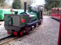 I come all the way up here and they give me the run around. Another view [see image 42745] of the 15-inch gauge Beyer-Garrett in the Forest of Dean in March 2013.<br><br>[Ken Strachan&nbsp;31/03/2013]