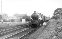 Wolverhampton based ex-GWR Castle class 4-6-0 no 5019 <I>Treago Castle</I> at the head of a train thought to be just north of Gobowen heading for Birkenhead in August 1960. [Ref long term query 13430]. <br><br>[David Stewart&nbsp;/08/1960]