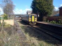 The 1248 service to Ormskirk departs from Croston station on 10 March 2015. Daffodils are out on the right while the tidy up of the south end of the old Preston platform continues, with several tree stumps awaiting removal. [See image 36136]<br><br>[John McIntyre&nbsp;10/03/2015]