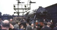 A platform and trackside scrum well underway at Dundee Tay Bridge station on 16 May 1964 following the arrival of 4472 <I>Flying Scotsman</I> from Aberdeen. The A3 was returning to Edinburgh with the Queen's College Railway & Transport Society <I>Flying Scotsman Rail Tour</I>. [See image 49458]<br><br>[John Robin&nbsp;16/05/1964]