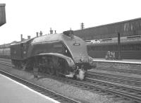 60031 <I>Golden Plover</I> ambles south on the middle road through Doncaster station tender first on 6 July 1963.<br><br>[K A Gray&nbsp;06/07/1963]