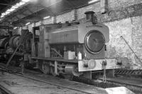 Inside the NCB shed at Mountain Ash on 19 October 1973 is 0-6-0ST <I>Llantarnam Abbey</I> (note the missing 'R' on the right hand tank-side) built by Andrew Barclay as No. 2074/1939. I have no record of the loco behind it but bringing up the rear appears to be the perhaps more interesting Avonside-built <I>Sir John</I> (No. 1680/1914).<br><br>[Bill Jamieson&nbsp;19/10/1973]