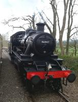 If you go down to the woods today... you are liable to find preserved Ivatt 2-6-0 46447 running round its stock. [see image 50924]<br><br>[Ken Strachan&nbsp;05/04/2015]