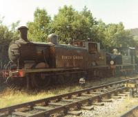 Billington 1897 ex LB&SCR Class E4 0-6-2T 473 <I>Birch Grove</I> (former BR 32473) stored in a siding south of Sheffield Park station in July 1969, in the early days of the Bluebell Railway. Wainwright 1904 SE&CR Class H 323 <I>Bluebell</I> stands beyond.<br><br>[David Pesterfield&nbsp;15/07/1969]
