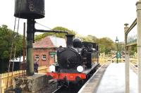 Adams O2 0-4-4T W33 <I>Bembridge</I> (in reality W24 <I>Calbourne</I>) taking on water at Haven Street on the Isle of Wight Steam Railway on 9 March 2015.<br><br>[Peter Todd&nbsp;09/03/2015]